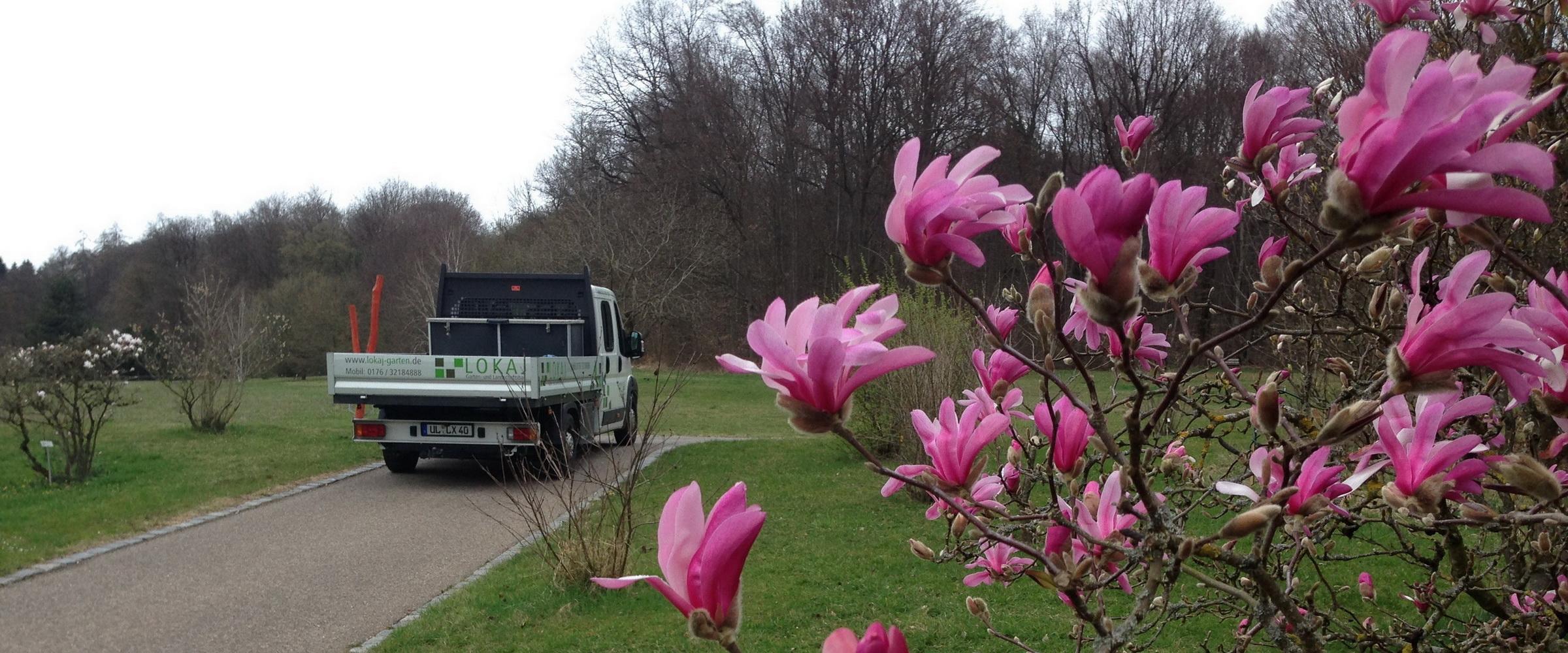 LOKAJ Garten- und Landschaftsbau – Ihr Partner in Ulm und Umgebung