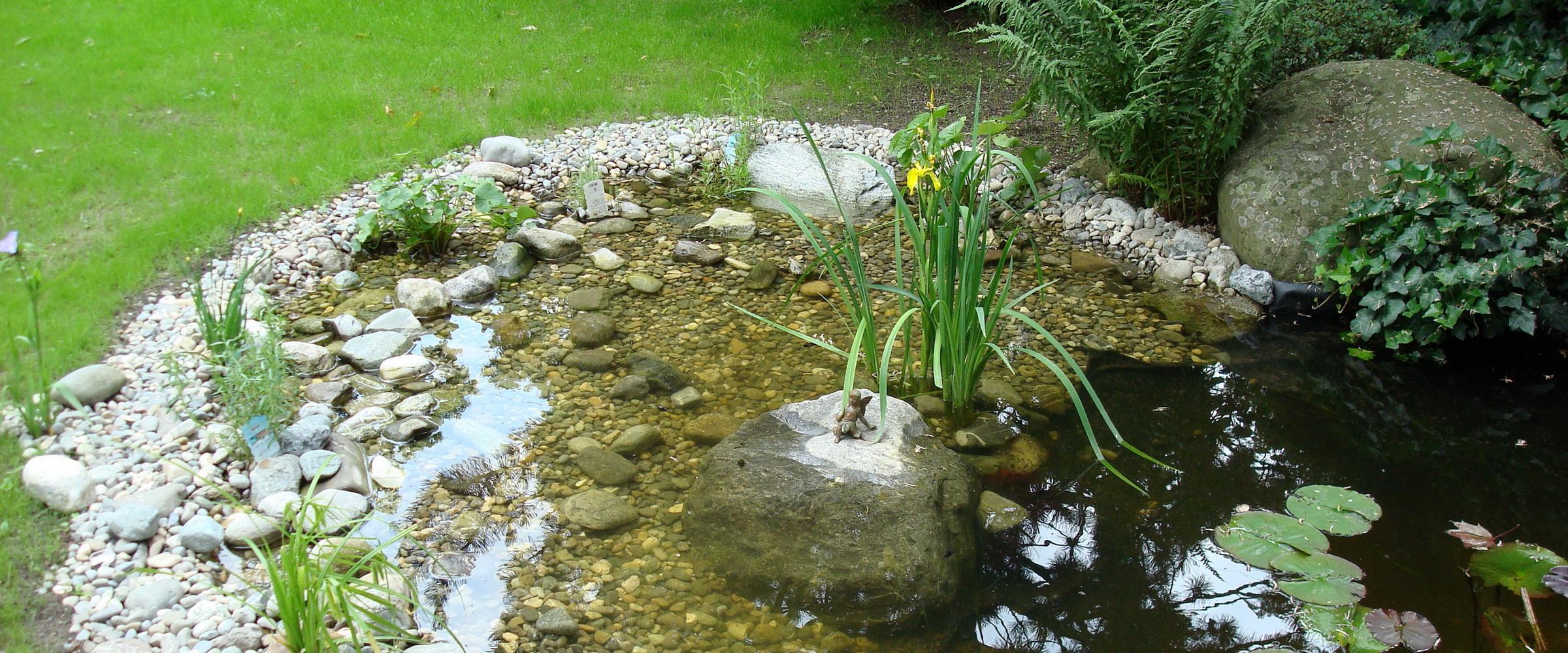 Ein Gartenteich im Kiesbett lässt jeden Garten schöner aussehen