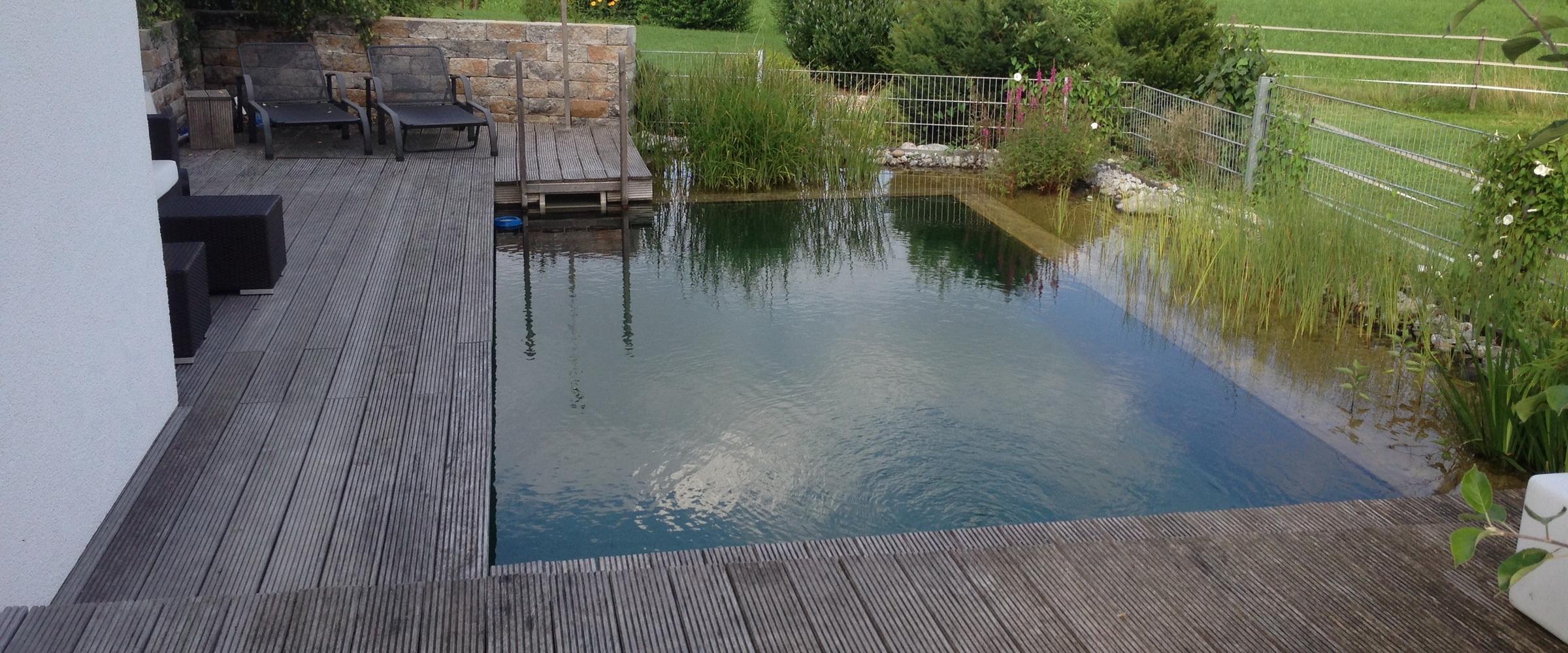 Ziehen Sie ein paar Bahnen in Ihrem natürlichen Schwimmteich